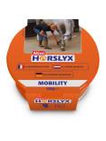 id1-horslyxmobilitymini650g14948.jpg