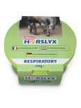 id1-horslyxrespiratorymini650g14952.jpg